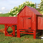best chicken coops you can build