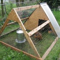 portable chicken coop plans
