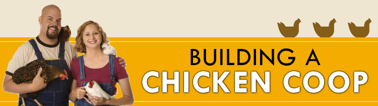 How To Build A Chicken Coop Review-How To Build A Chicken Coop Download