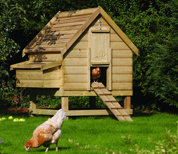 Build A Chicken Coop- Easy To Follow Guide